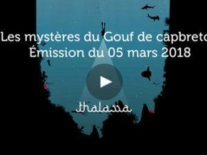 Émission Thalassa – Les mystères du Gouf