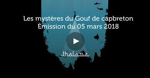 Emission thalassa les mystères du Gouf de Capbreton