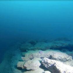 Site de plongée à Capbreton - les tombants des roches Duprat