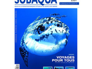 Subaqua #287